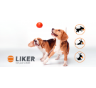 LIKER 7 - DOG TOY