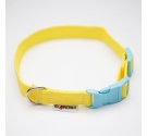 Collar PUPPY CLICK COLOR 2 cm