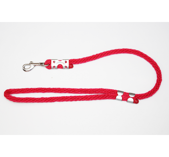 Whip/short rope leash EXCLUSIVE DELICATE  65 cm/12 mm